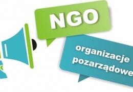 Spotkanie organizacyjne dla Organizacji Pozarządowych